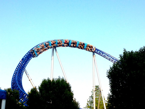 the-cat-god:  from my trip to cedar point last year