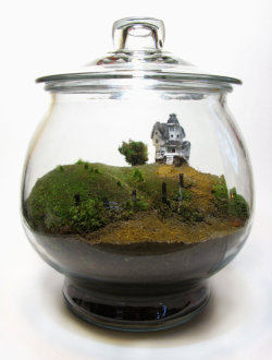 Beetlejuice Terrarium by Face of the Earth posted by ianbrooks.me