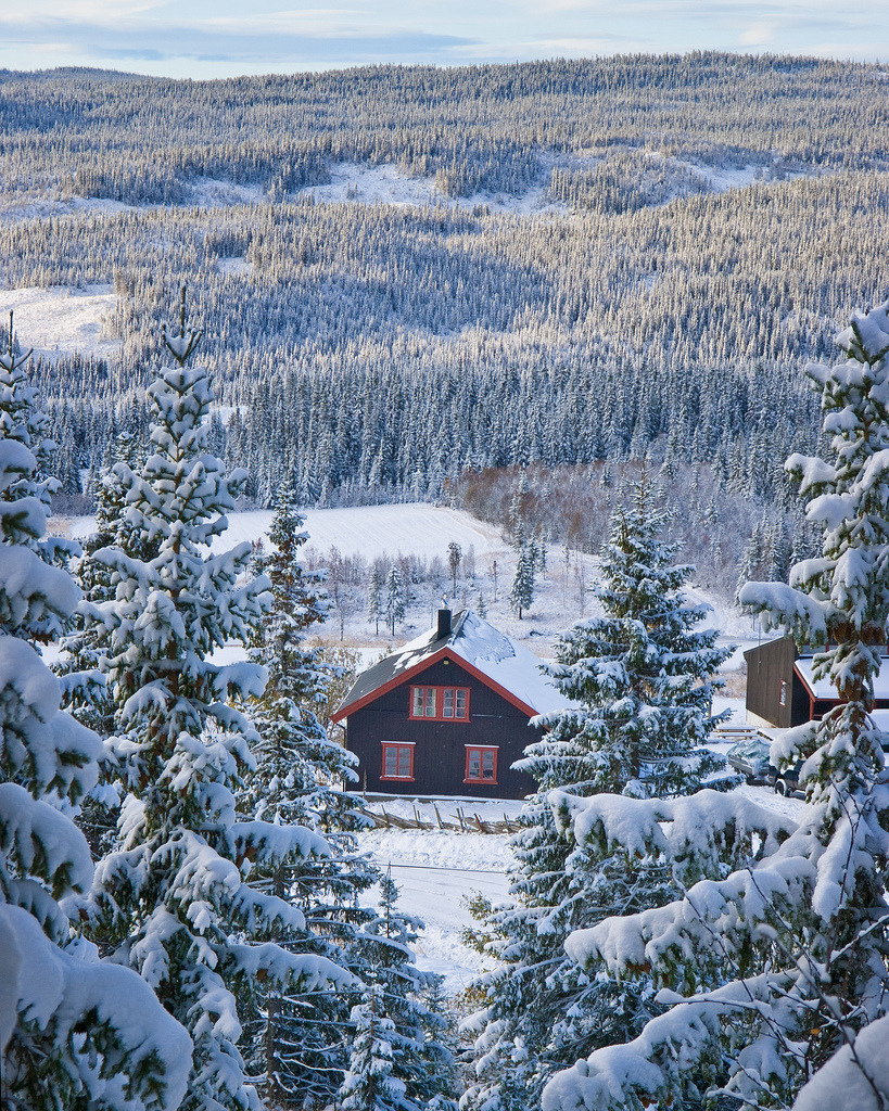 travelingcolors:  Hvit Host | Norway (by Kai Krog Halse)