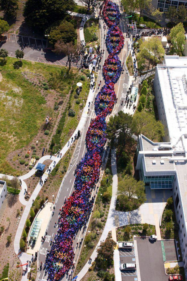 green-street-politics:  altnonfic:  2600 people form a chain celebrating the anniversary of DNA's discovery  DNA's discovery by a badass woman named Rosalind Franklin.