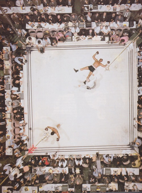 urbanfragment:  Ali vs. Williams  Muhammad Ali knocks out Cleveland Williams, 1966. This amazing shot was captured from a camera hung on a rig 80 feet above the ring at the Houston Astrodome. It has been said that it is the only photo Neil Leifer took himself that is hanging in his house.  View Post