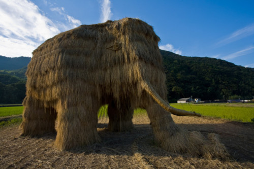 petapeta:  Natural Reinterpretation of a Fallen Mammoth Sculpture - My Modern Metropolis