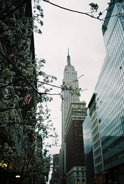 ambiants:  flag. by parker severns on Flickr.