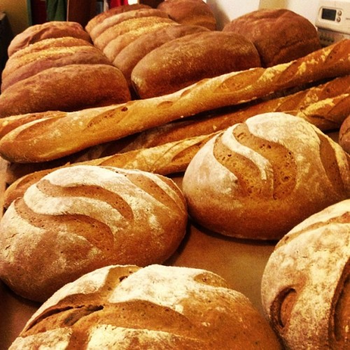 Pump Rye is the specialty. All loaves 5 bucks today (baguettes $2.50), Happy Sunday!  540 Delaware Ave, Albany, open 9-3