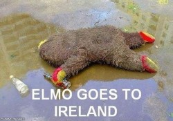 funny-share:  Elmo Goes To Ireland