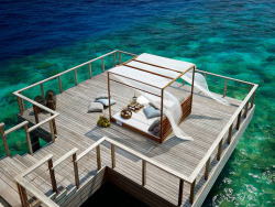 http://www.miss-design.com/interior/dusit-thani-maldives.html