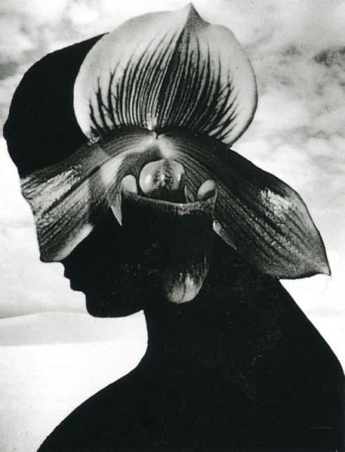 "gacougnol:  Ruth Thorne-Thomsen Senora Flora, New Mexico1986From the series ""Views from the Shoreline"""