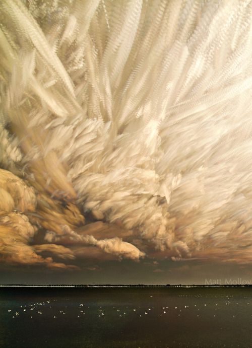 artchipel:   Matt Molloy | on Tumblr - Cloud Chaos Cropped I'm not sure how many photos I used to make this image. I can tell you it's in the hundreds.