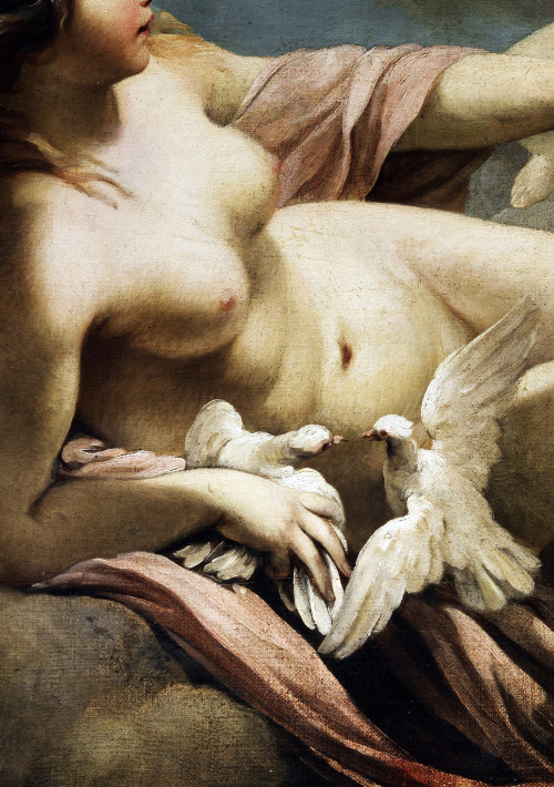 (Detail) Venus and Cupid,circa 1700.Sebastiano Ricci.