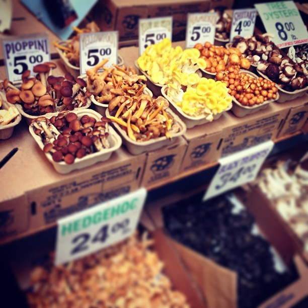 Yummy mushrooms (at Ferry Building)