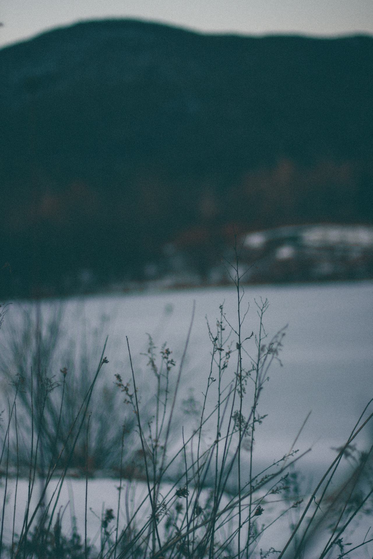Standing as a ghost before the echoing void // Part 11 #nature photography#empty spaces#bleak#ice#cold aesthetic#winter gothic