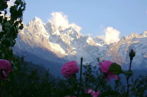 roses and mountains by ~FurSid on Flickr.