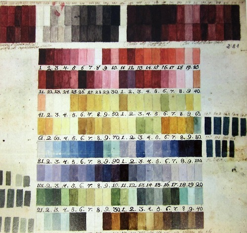 Colour chart used by Austrian botanical illustrator Ferdinand Bauer (1760-1826) for his field observations. His technique was to sketch a 'painting-by-numbers' in situ, which he could later add colour to after returning from whichever botanical expedition he was on. The example of his painting shown here is a depiction of Grevillea banksii, named for the great Sir Joseph. (via oak apples.)