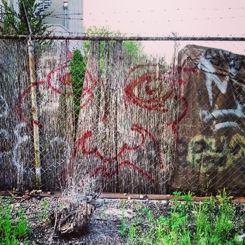 Exploring. #face #Chicago  (at Bloomingdale Trail)