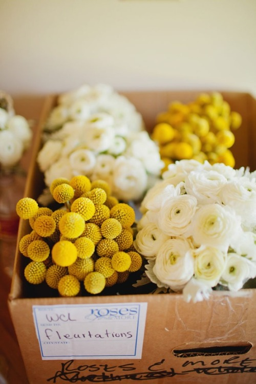 Photography By / meganrobinsonblog… Design By / fleurtationsflora…