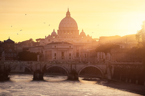 definitelydope:  The Vatican, Rome (by Beboy_photographies)