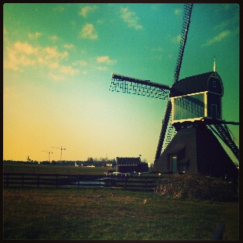 Classic Windmill + superb green #scenery. Awesome! (*´˘`*)♡
