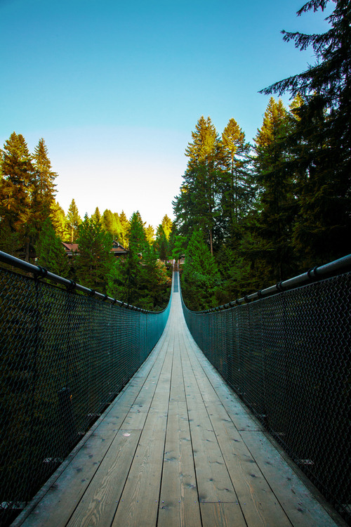 Capilano Suspension Bridge, Vancouver, Canada photo via letsget