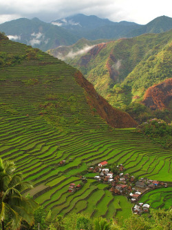 visitheworld:  Batad village in Ifugao Province, Philippines (by eazy traveler).  0.0 Wow!