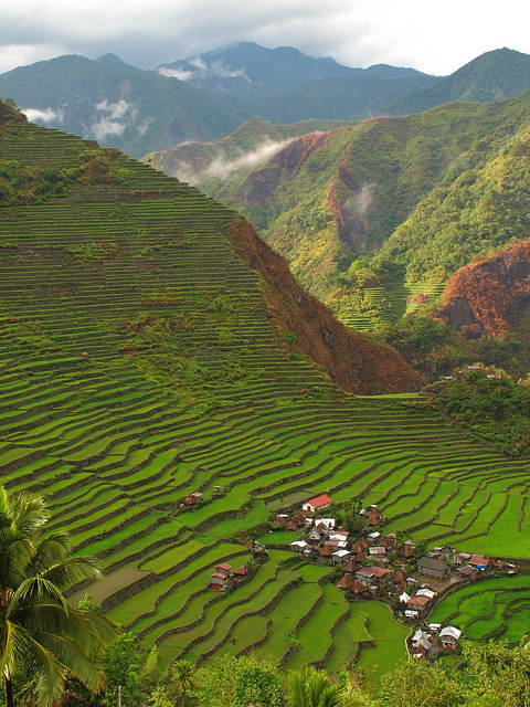visitheworld:  Batad village in Ifugao Province, Philippines (by eazy traveler).
