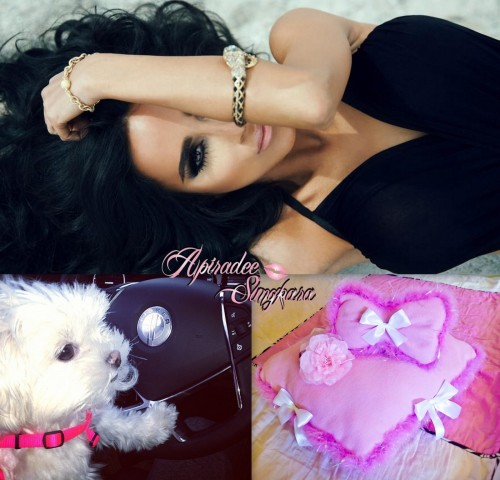 Custom dog bed designs by me for Lily Ghalichi from Shahs of Sunset for her Maltese puppy Coconut! <3 www.facebook.com/DeeLuck.CustomDesigns www.apiradeesungkara.co