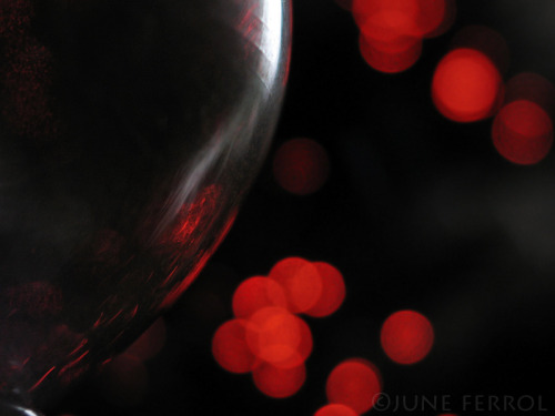 self-xpression:   WINE GLASS BY THE XMAS TREE  VII copyright ©JUNE FERROL  All Rights Reserved     Simplicity is the ultimate sophistication - Leonardo da Vinci