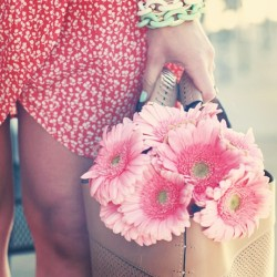 Gerberas and summer dresses