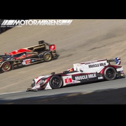 #ALMS meets #offroad action! Can you help us think up a better caption for this pic? #LucasLuhr #musclemilk #rebellion #lola #nickheidfeld #americanlemans #mazdaraceway #lagunaseca (at Follow @MOTORMAVENS on Vine)