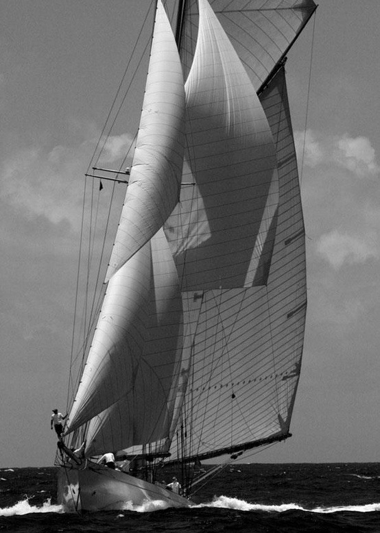 themindscanvas:  Wind and Sail.