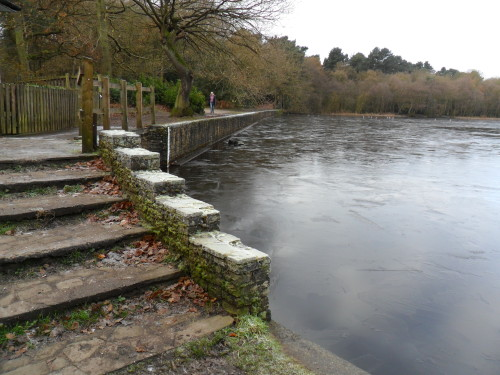 Bracebridge Pool frozen over, Sutton Park, Sutton Coldfield, England