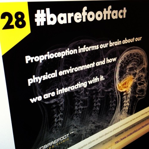Feeling is believing.  #barefootfact 28 Proprioception informs our brain about our physical environment and how we are interacting with it. http://www.vivobarefoot.com/barefoot-facts