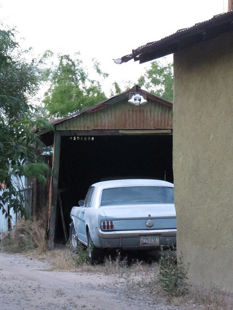 ford-mustang-generation:  Mustang barn find in Tucson AZ by zombieite on Flickr.