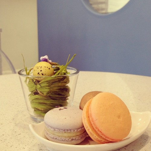 Happy Macaron Day! Here, Rocher, Blood Orange, and Lavender! (at Soirette Macarons & Tea)