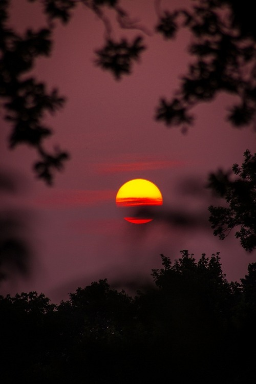 Zalazak sunca  - Page 9 Tumblr_n7ccemUEIG1rcntv6o1_500
