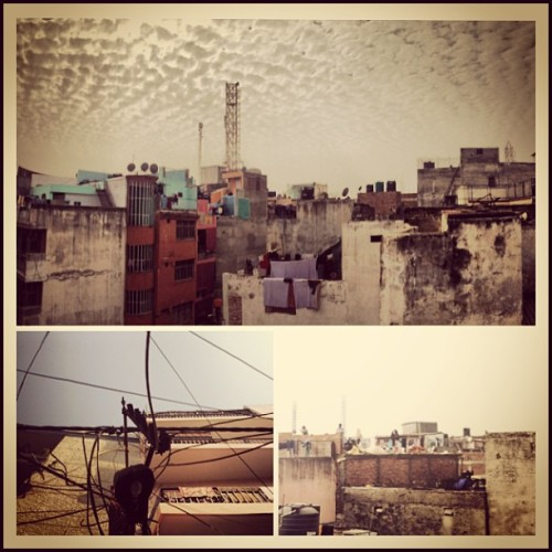 View from the top of an old basti in old Delhi. #india #igers #instaoftheday #instafun #photooftheday #picoftheday #delhi #travel #iphoneography