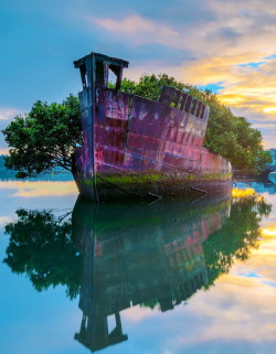 visitheworld:  SS Ayrfield shipwreck in Homebush Bay, Sydney, Australia (via thegeneralmonk).  Wait…this is real??