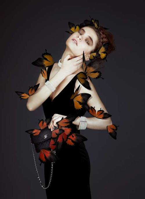 sexyqueen:  Butterfly-Infused Beauty (2)