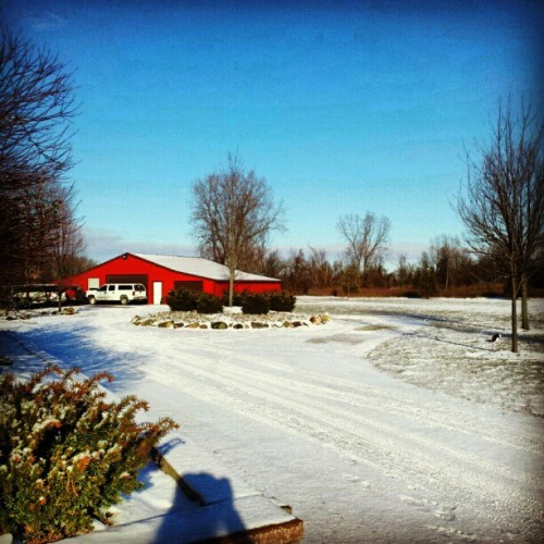 """I'm dreaming of a white Christmas"" #having #michigan #MerryChristmas #farm #redbarn (at The Szafranski Farm)"