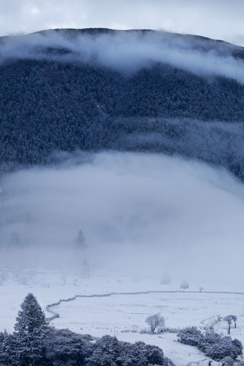 vahc:  Snow Country #06 (by LucyYoung)