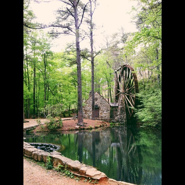 The Old Mill #berrycollege #romegeorgia #waterwheel #woodenwheel #oldmill #powerbynature #grainmill #historic #pond #reflection #forest #green #vscocam #lindseyamillerphotography