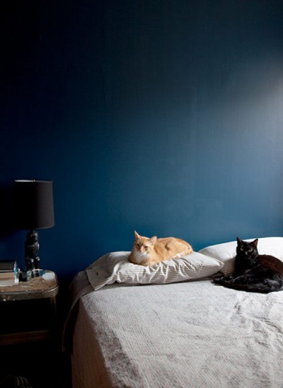 seventenclark:  (via Sneak Peek: Best of Cats, Part II | Design*Sponge)