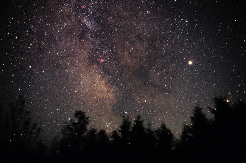never-s1nking:  Milky Way Landscape (by Nightfly Photography)