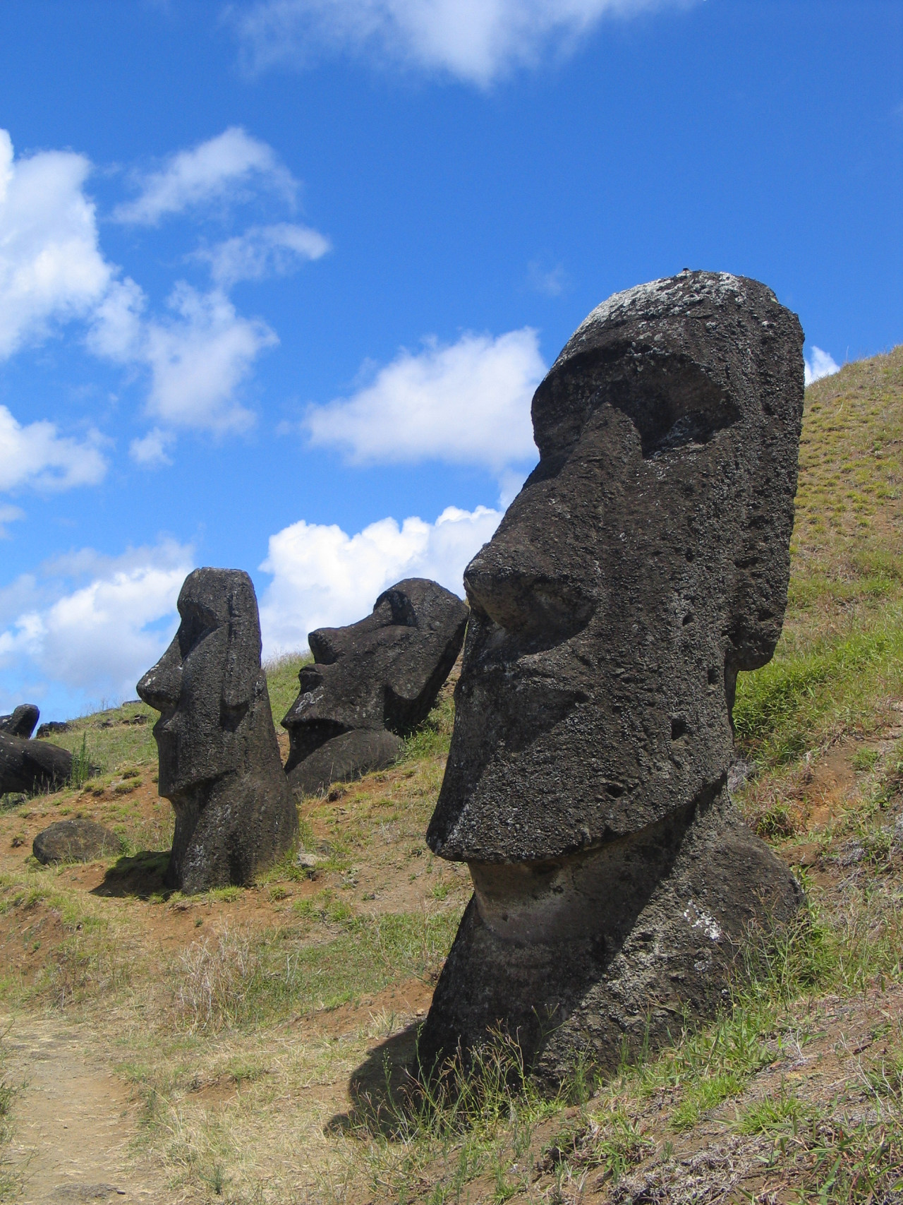 Moai at Rano Raraku, Easter Island. Photo courtesy Aurbina