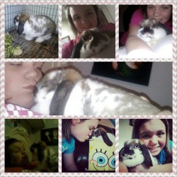R.I.P. Carlie Marie. You were the best bunny ever. And mommy loves you so much. And mommys so sorry. Thanks for all of the memories babygirl I will never ever forget you. And no bunny will ever replace you. You will always be mommys baby ): I already miss you. I love you Carlie have fun in bunny heaven say hi to chessy for me.