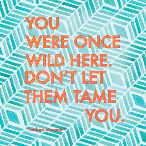 Don't let them tame you.