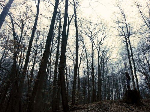 The forest and I, we sing the same song.