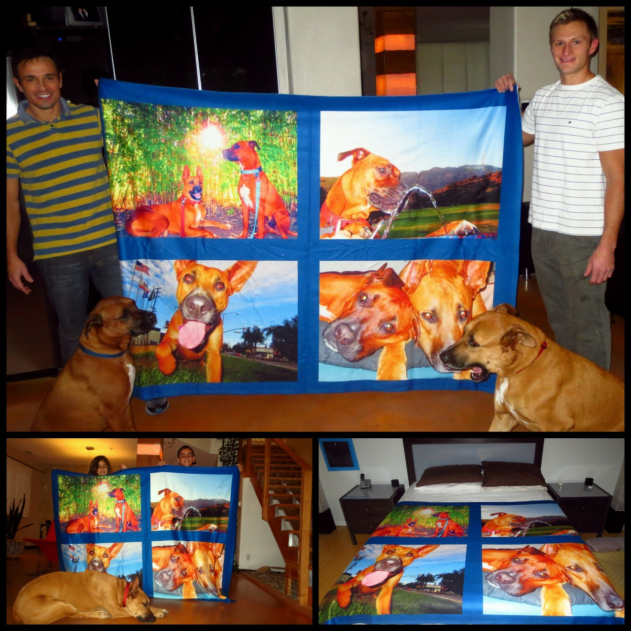 The Chazz & Rio blanket I made for Claudio and Ryan for Christmas, was a hit!