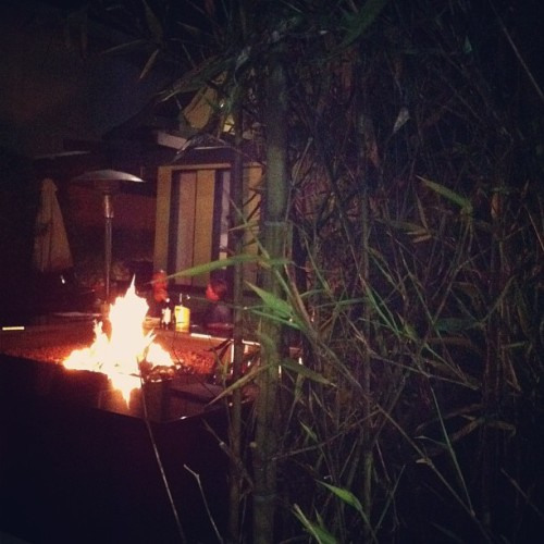fire (at Bar Hayama)