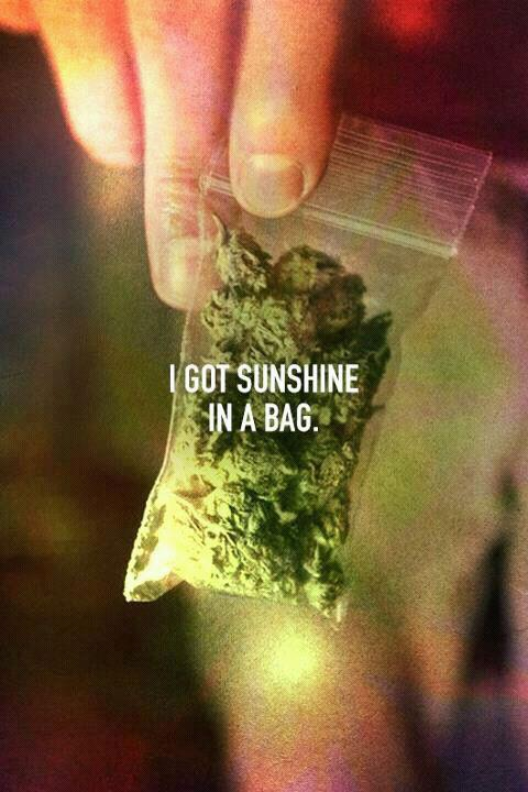 brandonpadrino:  im walking on sunshine  Why are you walking on weed?!