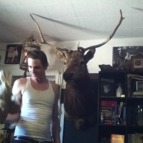 thetaxidermist:  About two weeks ago we got this huge taxidermy ELK from a friend of ours for $20. The only catch was that he was sans antlers… which was just fine with us, especially at that price. Then this past Wednesday we found these horns for $15 and Ryan sliced them up to fit perfectly….. Now this MASSIVE dude and his MASSIVE antlers are hanging intensely in our living room.  SO SICK !!!!!! -Jen
